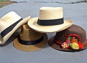 Fedoras and Panamas IV