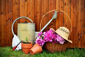 Gardening tools and objects on old wooden background