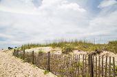 Beach Umbrellas Past Fence And Sand Dunes