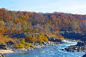 Potomac River and trees in colorful foliage.