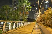 pic of singapore night  - scenic illumination of pedestrian walkway in Singapore downtown by night - JPG