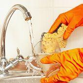 Hands in gloves with sponge wash glass under running water