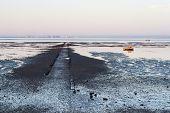 essex coastline uk