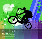 BMX, extreme sport vector illustration