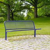 Bench In A Summer Park