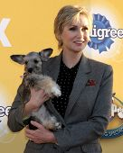 LOS ANGELES - NOV 22:  Jane Lynch at the FOX's
