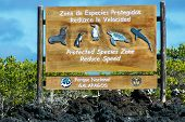 Sign In The Galapagos National Park, Ecuador To Protect Animals