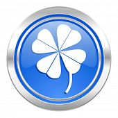 four-leaf clover icon, blue button