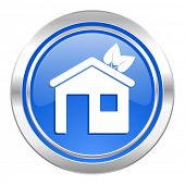 house icon, blue button, ecological home symbol