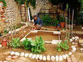 Man Preparing Land Garden Shed