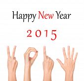 2015 new year showing by woman hands
