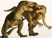 A Spinosaurus and Tyrannosaurus Battle Against White
