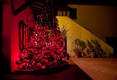 Christmas Tree With Red Lights At Tuscan Farm