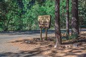 picture of redwood forest  - A sign for the picnic area at Grizzly Falls in Sequoia National Forest - JPG