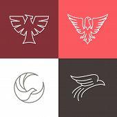 stock photo of falcon  - Vector eagle and falcon linear logo design templates  - JPG