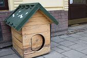 picture of dog-house  - Street dog house with new roof Dog Wooden - JPG