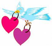 bird pick up heart