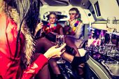 picture of hen party  - Girls in limo at hen - JPG