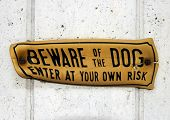 Beware of the Dog (with clipping path)