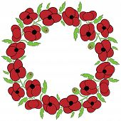 picture of poppy flower  - Poppy seeds flowers wreath with leaves and vary poppy seeds flowers - JPG