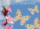 image of piety  - flowering peach tree branch and three butterflies made from matzo on the background of bright blue sky with the inscription  - JPG