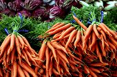 Carrots And Radicchio