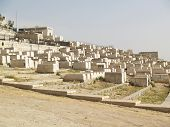 View On Cemetery On The Mountain Of Olives