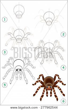 poster of Educational Page For Kids Shows How To Learn Step By Step To Draw A Cute Spider. Back To School. Dev