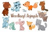 Woodland Animals Vector Clipart On White Background. Cute Vector Illustrations Of Bear, Beaver, Fox, poster