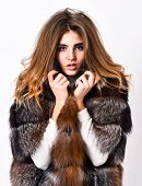 Winter Elite Luxury Clothes. Female Brown Fur Coat. Fur Store Model Enjoy Warm In Soft Fluffy Coat W poster