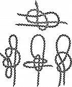 Sea Knot2.eps