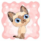 Siamese Cute Kitty Background  Pink Vector Illustration poster