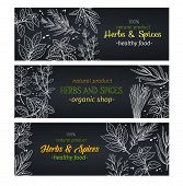 Hand Drawn Herbs And Spices , Layout For Farmers Market Menu Design. Vector Illustration Template De poster