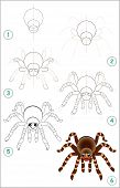 Educational Page For Kids Shows How To Learn Step By Step To Draw A Cute Spider. Back To School. Dev poster