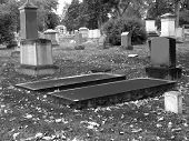 Black And White Graveyard