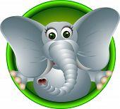 cute elephant head cartoon