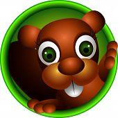 cute squirrel  head cartoon