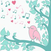 Bird`s-love-song
