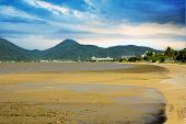 Cairns Mud Flats