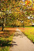 Pathway During Autumn, London, England Uk