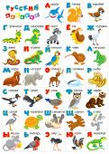 stock photo of russian tortoise  - Russian letters with cartoony animals for preschool and school education - JPG