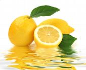 Lemon Reflection