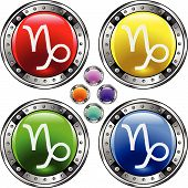 Bigbutton astrology sign capricorn