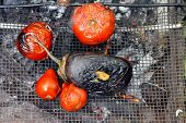 Grilled  Tomato And Eggplant On The Bonfire