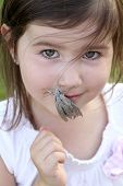 pic of hawk moth  - Hawk Moth on the mouth of a child - JPG