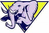 Elephant Prancing Triangle