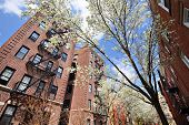 Apartments in the spring in the Chelsea neighborhood of New York City.