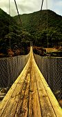 Tsitsikamma Nature Reserve Bridge