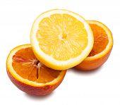 Half Lemon On Halved Orange Isolated On White