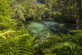 Te Waikoropupu Springs also known as Te Pupu Springs